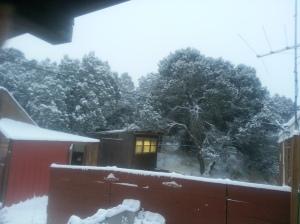 12142015 snow on sheds